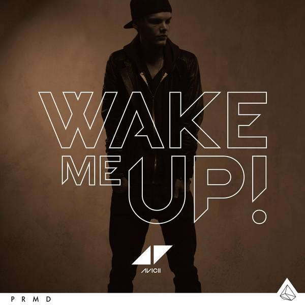 Testo, video e traduzione di avicii wake me up